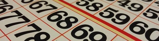 National Bingo Day!
