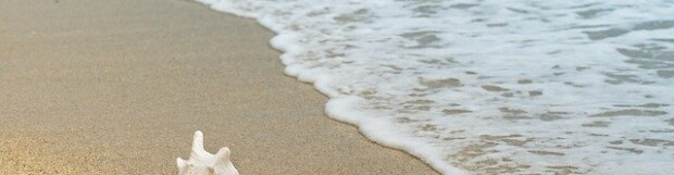 Health Benefits of Going to the Beach!